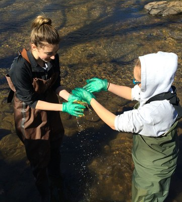 Bethel students study their watersheds