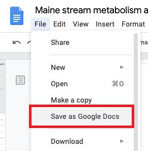 Google Drive Save as Google Doc