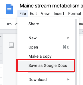 Google Drive Save as Google Doc