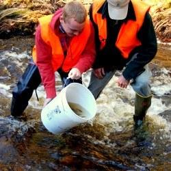 Down East salmon hatchery expansion under way in East Machias