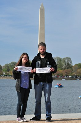 Alewives at the Washington Monument