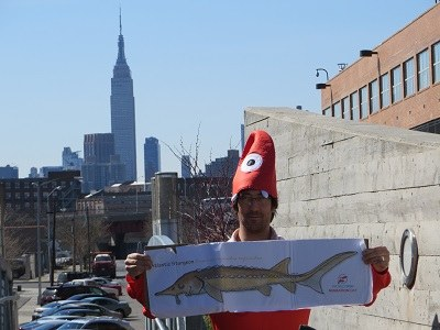 John Carter and Empire State Building and migratory FISH