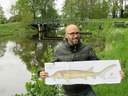 This is Henk Wilmink, Friesland, the Netherlands and a migratory fish