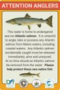 Atlantic salmon warning sign