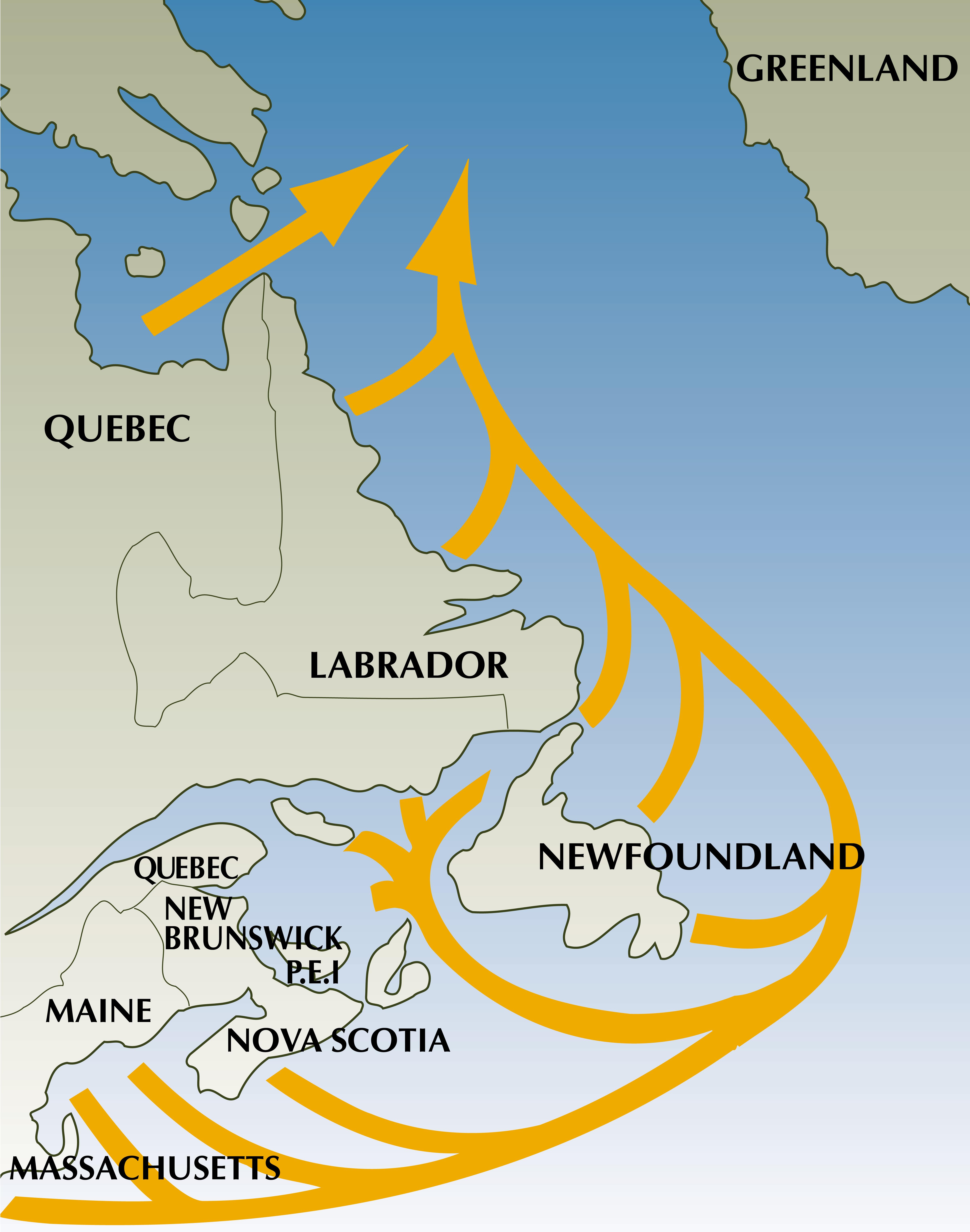 Migration route.jpg