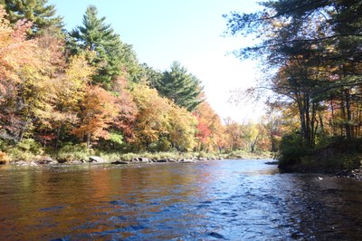 Canadian partners make headway on classification system to guide freshwater conservation