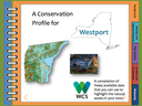New resource empowers communities in New York to protect natural assets