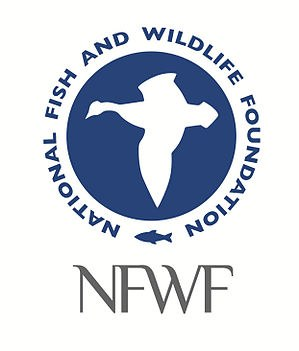 NFWF announces more than $12.6 million in grants from Chesapeake Bay Stewardship Fund
