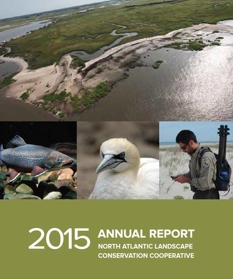 North Atlantic LCC 2015 Annual Report