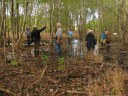 Permanent database grows for temporary wetlands