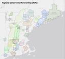 Regional Conservation Partnerships explore landscape conservation design