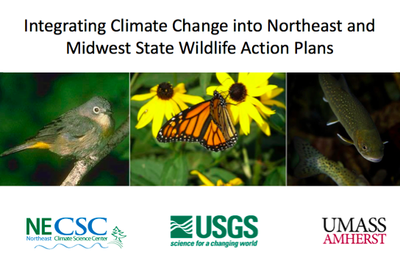 Guide offers resources for states to integrate climate science into SWAP updates