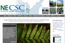 Northeast Climate Science Center Newsletter