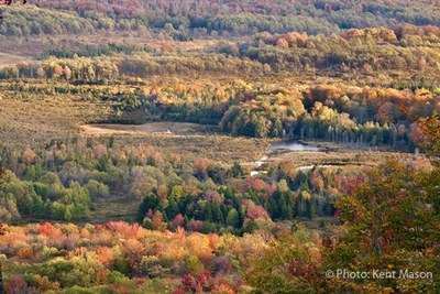North Atlantic LCC Demonstration Project: Climate Adaptation in Appalachian Forests