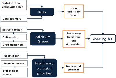 Phase 1 flow chart