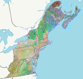 Extending the Northeast Terrestrial Habitat Map to Atlantic Canada