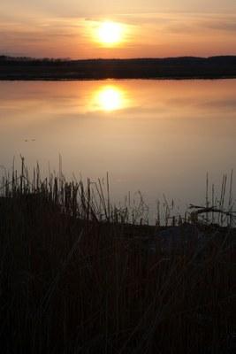 Conservation Design: Sunset on CT River