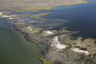 Hurricane Sandy: Martin National Wildlife Refuge