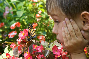 boy-with-monarch-butterfly-ryan-hagerty-usfws-300.jpg