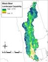 Landscape Capability for Black Bear