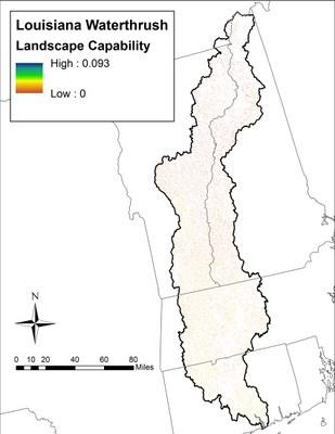 Landscape Capability for Louisiana Waterthrush