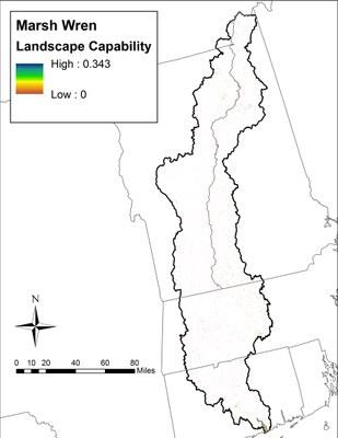 Landscape Capability for Marsh Wren
