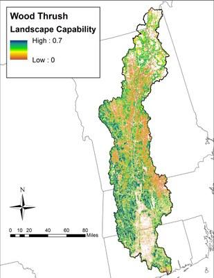Landscape Capability for Wood Thrush