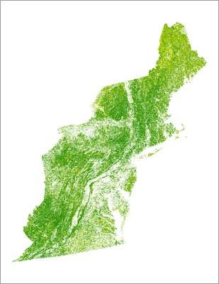 Forest Above-ground Biomass, 2012, Northeast