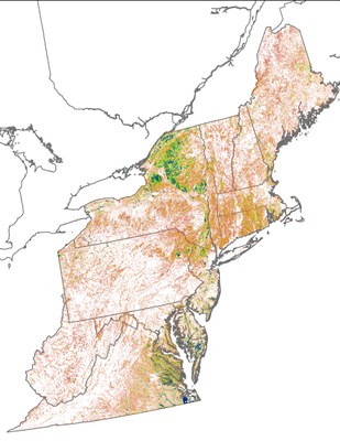 Landscape Capability for Wood Duck, Version 2.1, Northeast