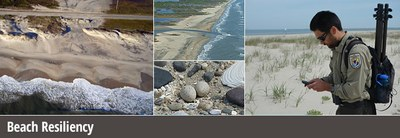 Beach Resilience collage