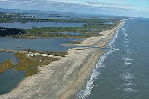 Beach Resiliency
