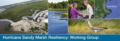 Hurricane Sandy Marsh Resiliency Gallery