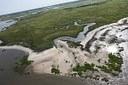 Marsh Resiliency