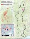 Northern Peatland Fens