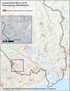 Ruderal Scrubland Grassland