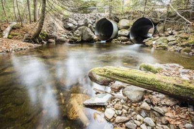 Twin pipe culvert at Roaring Brook