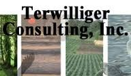 Terwilliger Consulting